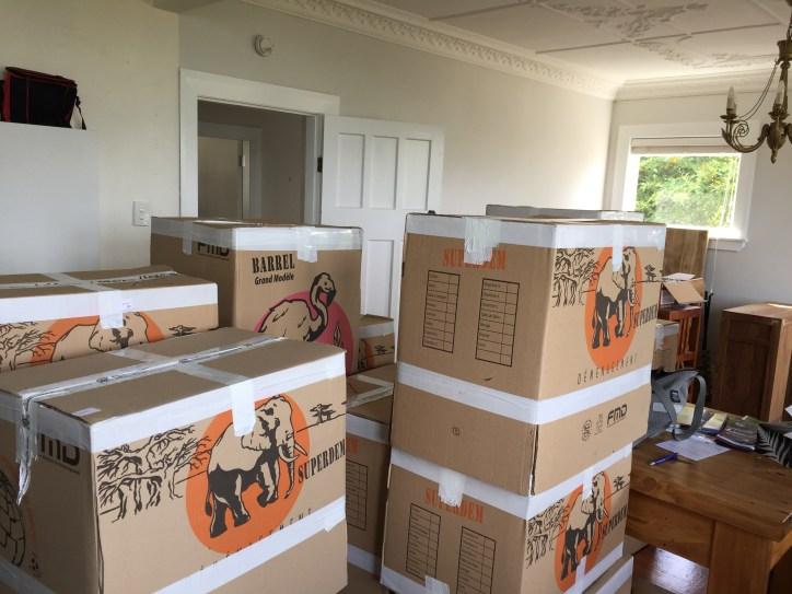 Moving in, Dunedin