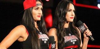 Les Bella Twins à Smackdown