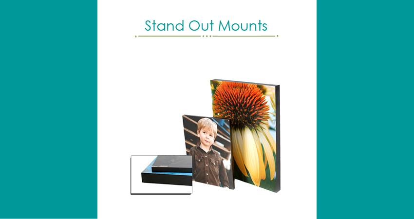 stand out mounts