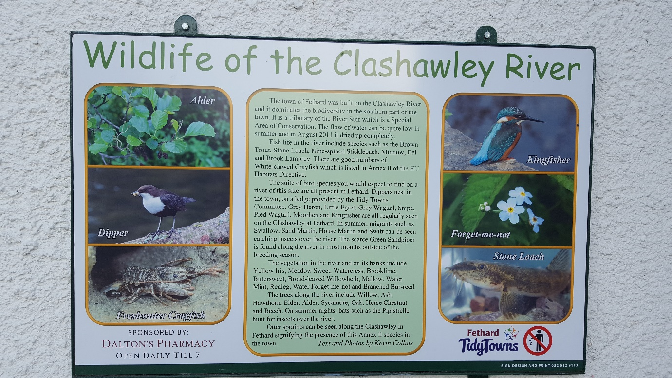 Biodiversity Signage at Fethard - communities working to create awareness of wildlife along their local river.