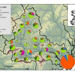 Sources of phosphorus in the Suir subcatchments