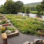 Kilsheelan Tidy Town's Committee's 'Garden of Renewal'