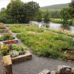 Kilsheelan Tidy Town's Committee's 'Garden of Renewal'