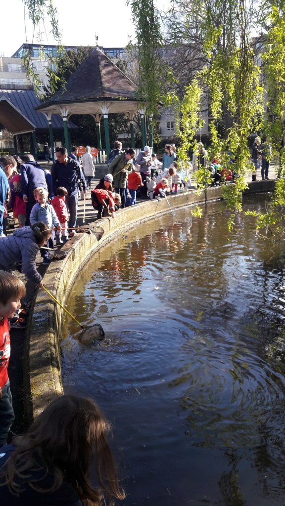 LEARNING ABOUT WHAT LIVES IN THE RIVER DODDER