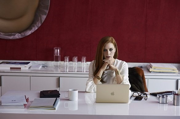 nocturnal animals 5