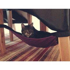 Under Chair Cat Hammock Iron Lounge Chairs Crib Photos. Pictures Of The Comfiest Hammocks! — Catcrib.com