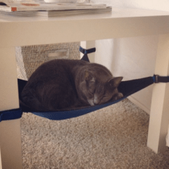 Cat Hammock Under Chair Best Gaming For Back Pain Crib The Your Kitty