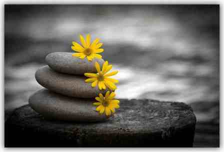 Piedras de primavera, spring stones