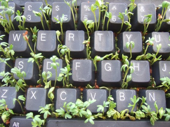 cress keyboard