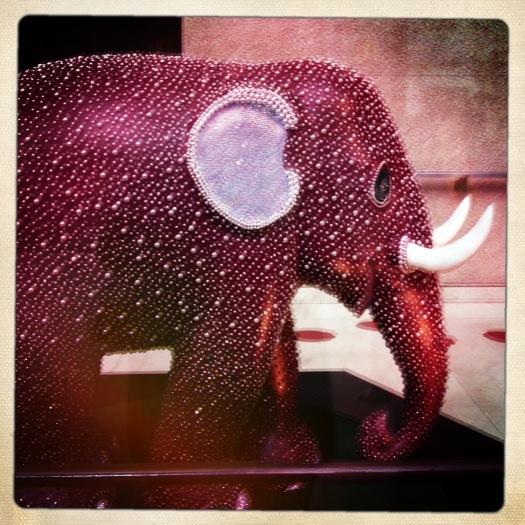 sparkly elephant