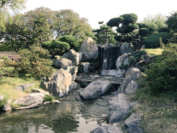 waterfall in the japanese garden