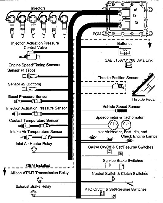 3100 HEUI Engine Harness Wiring Diagram