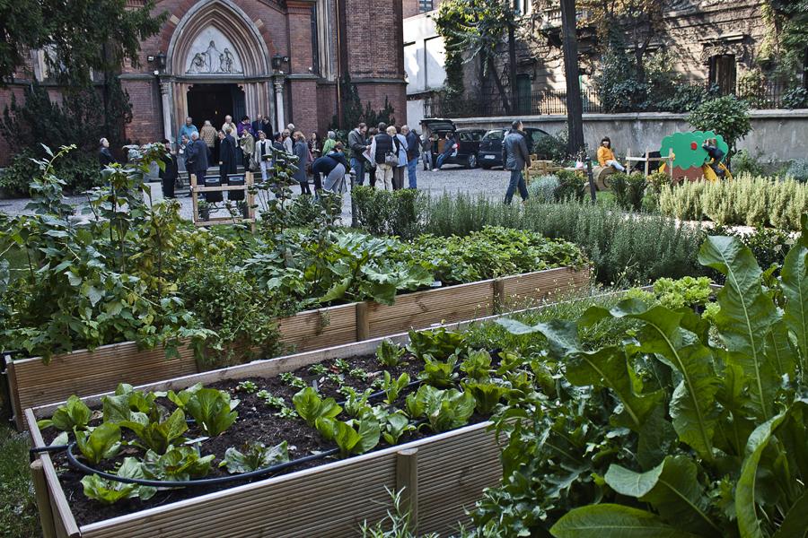 URBI ET ORTI Reportage sugli orti urbani di Milano  Foto