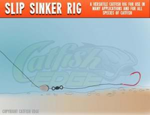 Slip Sinker Rig Catfish