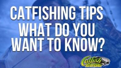Catfishing Tips