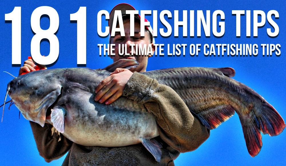 catfish fishing rules