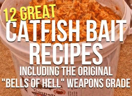 Catfish Bait Recipes