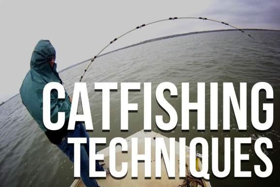 Catfishing Techniques