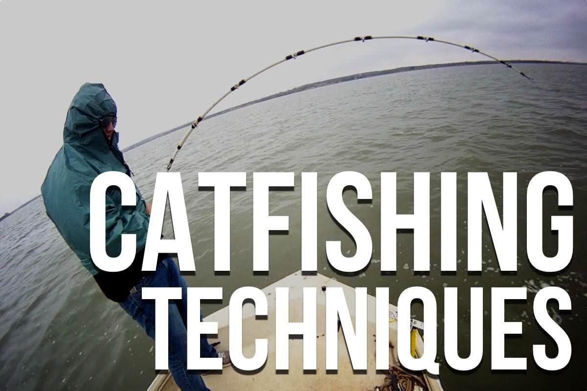 Catfishing Tips: The Ultimate List Of Catfishing Tips
