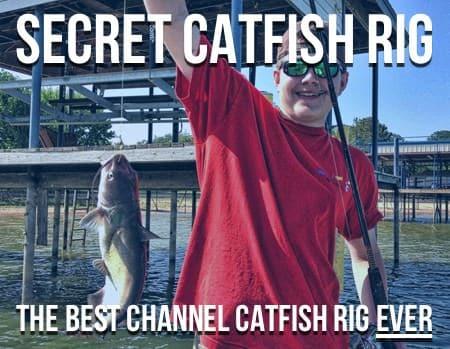 Secret Catfish Rig