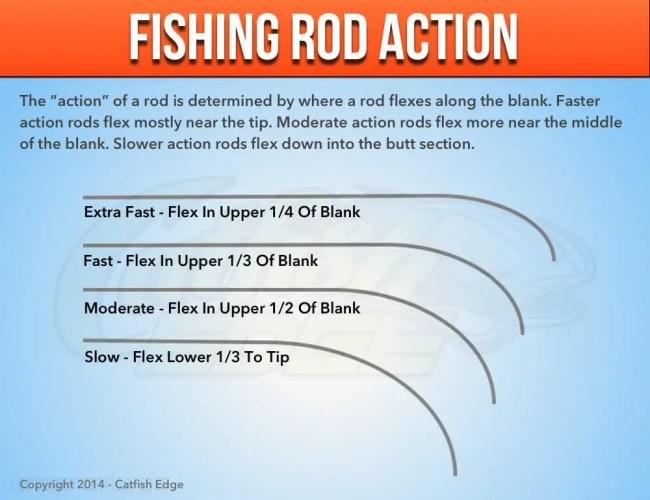 Fishing Rod Action For Catfish