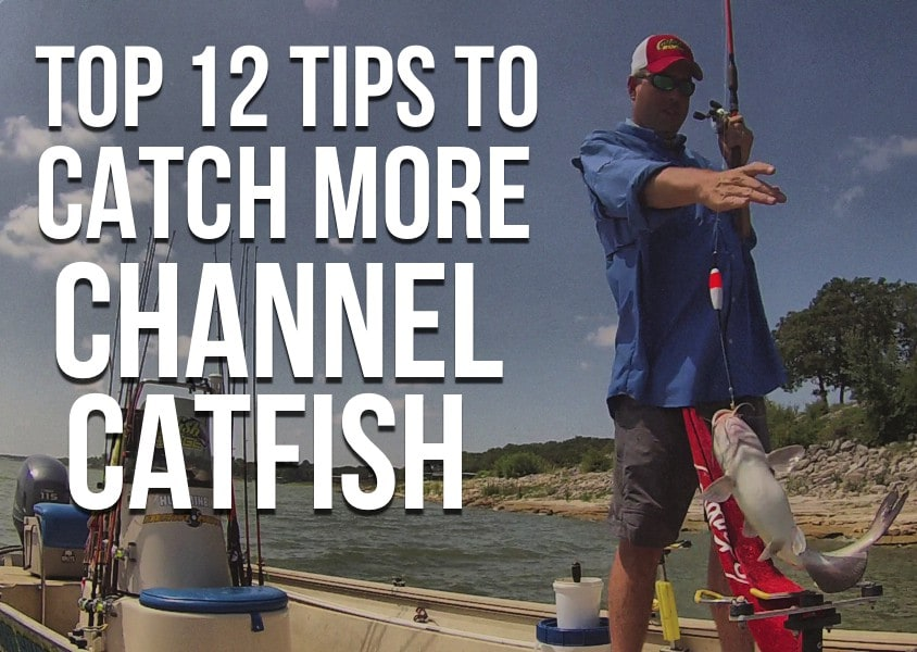 Top 12 Channel Catfish Tips, Start Catching More Catfish