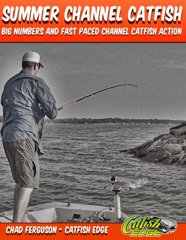 Summer Channel Catfish Cover 375