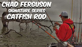 Chad Ferguson Catfish Rod