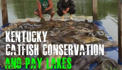 Kentucky Catfish Conservation and Pay Lakes