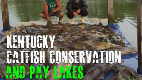 Kentucky Catfish Conservation and Paylakes