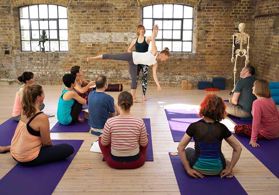 Yoga Teacher Training Diploma 300hr - Catherine Annis