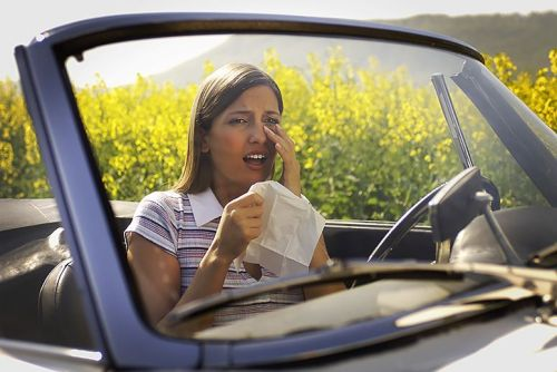 3 Tips to Alleviate Your Allergies in the Car