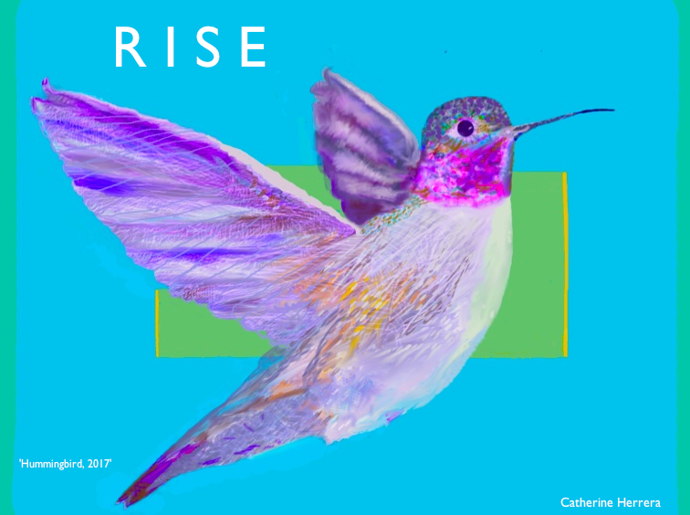 'Rise, Hummingbird, 2017' design and image by Catherine Herrera, Contact for License, All Rights Reserved best original FINAL