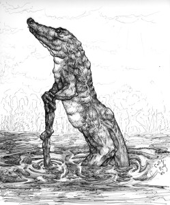 Old Crocodile