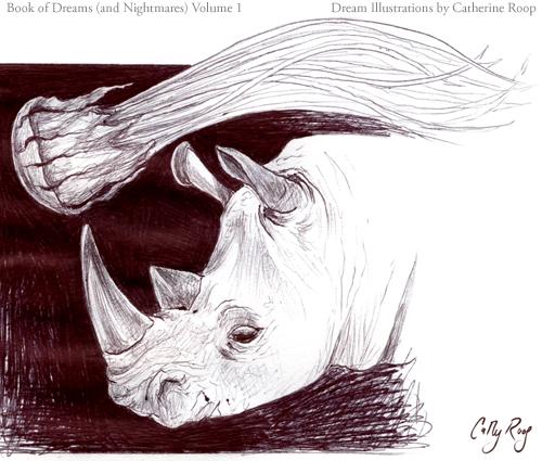 Rhinoceros and Jellyfish
