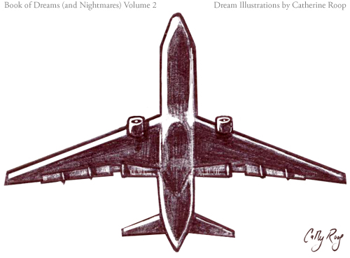 Sound of a Plane