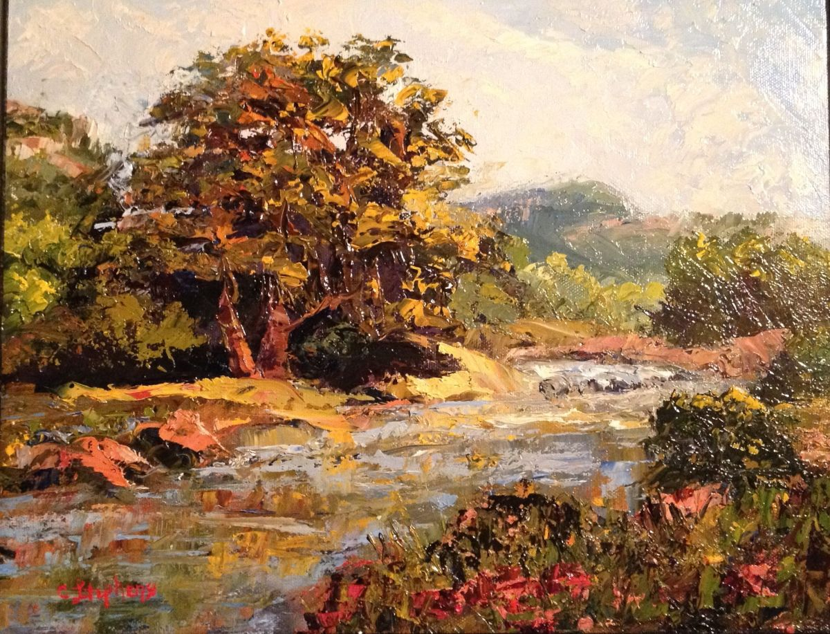 """Original Oil Painting by Catherine Stephens, """"Along Rocky Creek"""" Oil on Canvas, 11"""" x 14"""" Framed. online"""