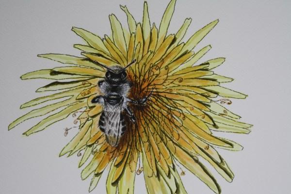 Honey Bee Flower Watercolor