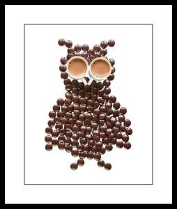 379_frameChocolate Owl with Hot Choc Eyes_2017_