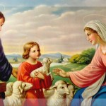 YEAR C: HOMILY FOR THE SOLEMNITY OF THE HOLY FAMILY (10)