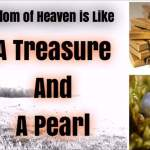 HOMILY FOR THE SEVENTEENTH SUNDAY IN ORDINARY TIME YEAR A (3).