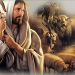 HOMILY FOR THE LAST SUNDAY IN ORDINARY TIME YEAR A. SOLEMNITY OF CHRIST THE KING (12)