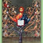 YEAR B: HOMILY/REFLECTION FOR THE 5TH SUNDAY OF EASTER (5)