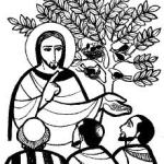 YEAR B: HOMILY FOR THE ELEVENTH SUNDAY IN ORDINARY TIME (8)