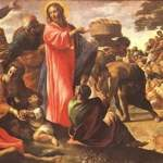 YEAR B: HOMILY FOR THE 17TH SUNDAY IN ORDINARY TIME (11)