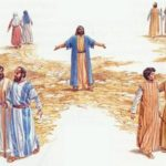 YEAR B: HOMILY FOR THE 15TH SUNDAY IN ORDINARY TIME (7)