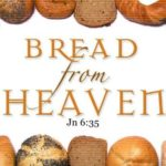 YEAR B: HOMILY FOR THE 19TH SUNDAY IN ORDINARY TIME (4)