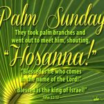 YEAR A: HOMILY FOR PALM SUNDAY OF THE PASSION OF THE LORD (5)
