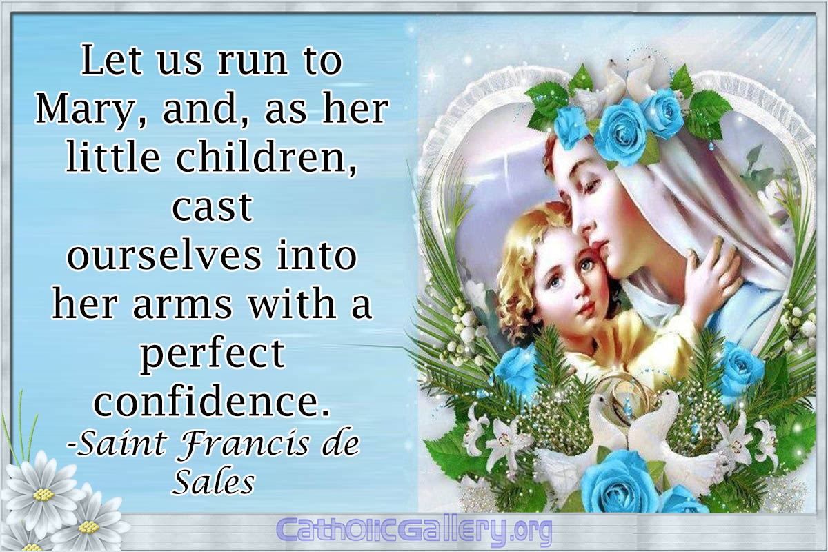 Quotes About Mary Pictures Page 3 Catholic Gallery