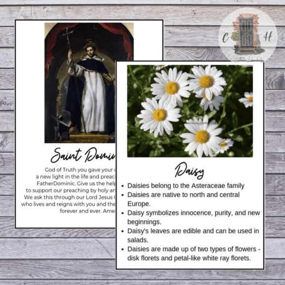 Alphabet saint prayer cards and printable flower fact cards